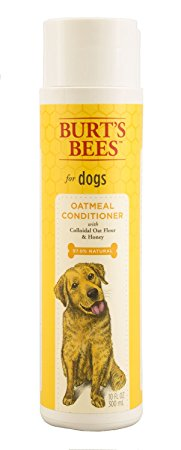 9. Oatmeal Dog Conditioner