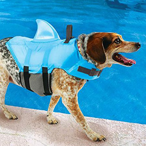 5. Swimways Sea Squirts Doggie Jacket with Fin, Color: Blue, Medium