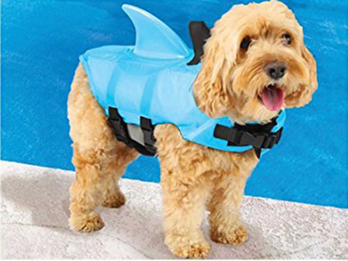 7. Swimways Sea Squirts Doggie Jacket with Fin, Color: Blue, small