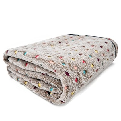 4. PAWZ Road Pet Dog Blanket, Medium, Gray