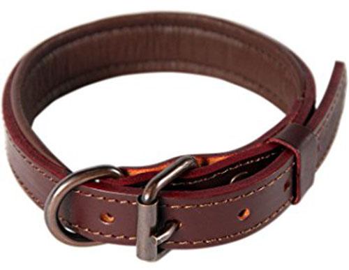 7. Padded Leather Dog Collar by logical leather