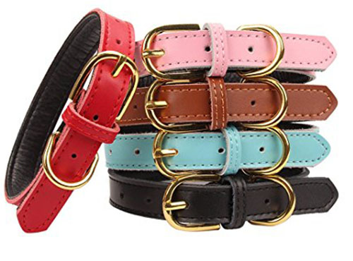 2. Aolove Basic Classic Padded Leather Pet Collars