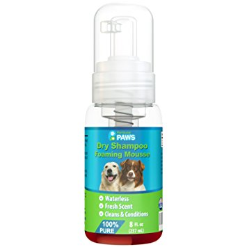 4. Particular Paws Dry Shampoo for Dogs