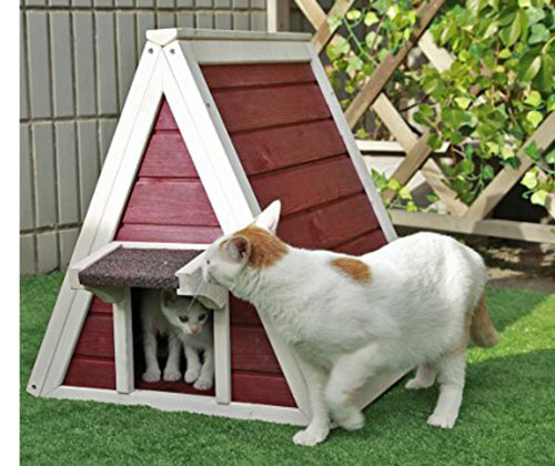4. Petsfit Outdoor