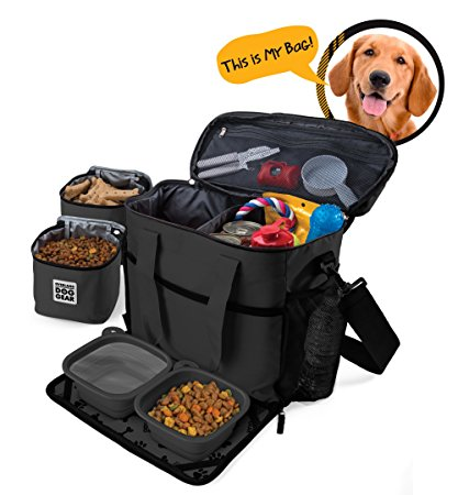 6. Dog Travel Bag Carriers