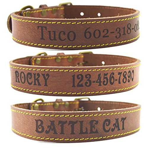 4. Shorven Custom Engraved Genuine Leather Dog Collar with Any Text