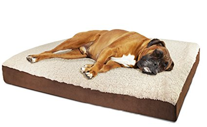 7. Paws & Pals Orthopedic Pet Bed Foam-Mattress for Dogs & Cats